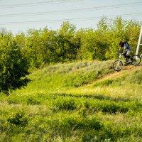 Downhill :: Дмитрий Грабинский
