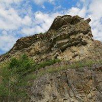 Верблюд -гора :: leoligra