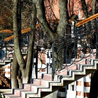 лестницы :: Ольга Заметалова