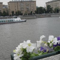 У Москвы-реки. Июнь. :: Маера Урусова