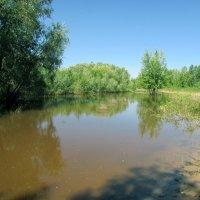 Тихое озеро :: раиса Орловская