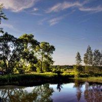 Летом у пруда :: Юрий