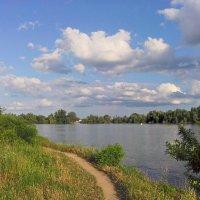 Высокая вода в жарком июле :: Алексей Меринов