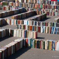 читаем книжки или :: Олег Лукьянов