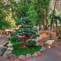 сад с камнями :: Александр Корчемный