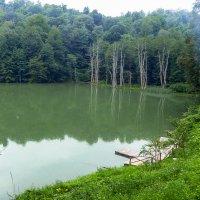 Секретное озеро. :: Юлия Бабитко
