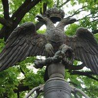 Двуглавый орел на ограде Свято-Преображенского собора :: Елена Павлова (Смолова)