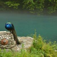 Голубое озеро :: Екатерина Жукова