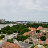 Novi Sad Srbija :: Valeri Klemenko