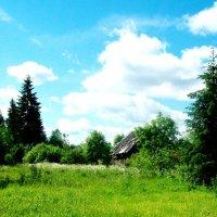 Деревенская окраина :: Виктор Елисеев
