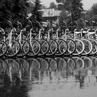 Велосипеды :: Николай Филоненко