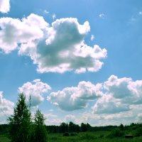 В деревне :: Ирина Кочкарева