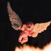 angel :: Trage