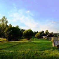 В деревне :: Елизавета Зайцева