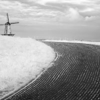 Ветер :: Сергей Козинцев