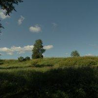 вид из Летнего сада :: Михаил Жуковский