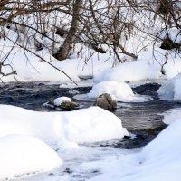 природа зимы :: Алексей Мелузов