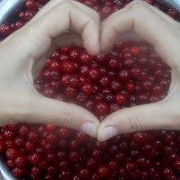 вишневая любовь) :: galinka boss*