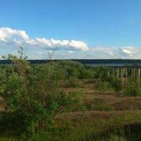 Вид на реку! :: Кристина Виноградова