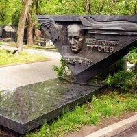 Памятник на могиле Туполева :: Владимир Болдырев
