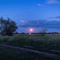 Наступление ночи.. :: Владимир Сквирский