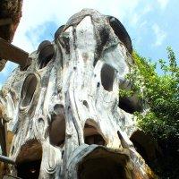 Crazy house или чокнутый дом в Далате (Вьетнам) :: Андрей Головин