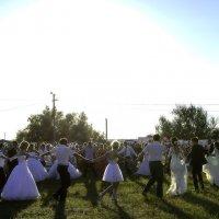 Женихи и невесты... :: Игорь Денисов