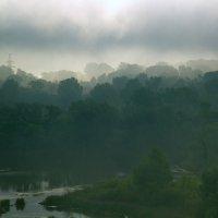 В заколдованных болотах - там кикиморы живут... :: Арсений Корицкий
