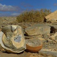 Друзы. Египет, плато Эль Гуна :: Elka34 34