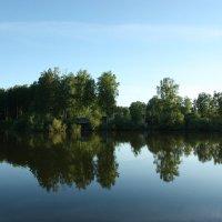 На озере. :: Ольга