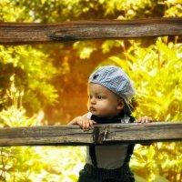 Little Sunshine :: Julia Pitt