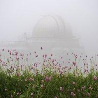 Башня в облаке 1 :: Роман Небоян