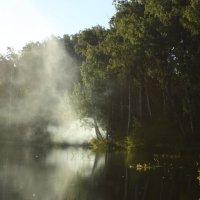 Сладкий дым отечества :: Ольга