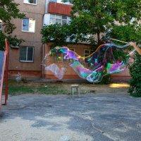 Гигантские мыльные пузыри :: Ольга Кучаева