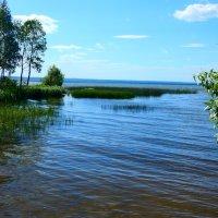 Плещеево озеро :: Наталья