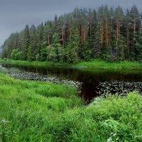 Тотьма.Река Царева :: Валерий Талашов