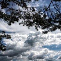 Небо.Ты идеально... :: Андрей Туксунов