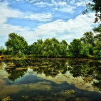 Горное озеро. :: ОЛЕГ ПАНКОВ