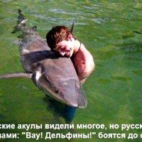 Любовь российского туриста :: Kapitan Z