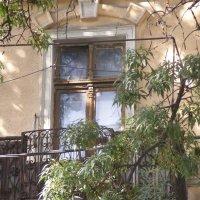Окна позапрошлого века! :: Александр Скамо