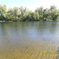 вода :: татьяна иванова