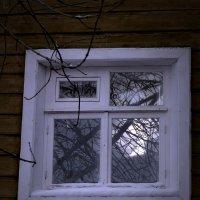 глаз  дома :: Дмитрий Потапов
