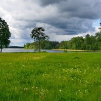 Валдай. :: kolin marsh
