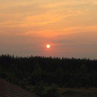 Солнце шариком скатилось с неба. :: Николай Масляев