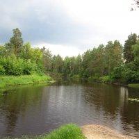 На лесной речке :: Андрей Снегерёв