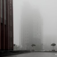 набережная Рио-де-Жанейро... туман... :: Alexandr Gold