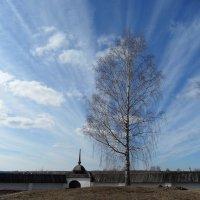 Ферапонтов монастырь :: Ирина Л