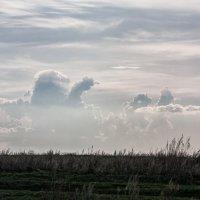 казахское небо :: Александр Решетников
