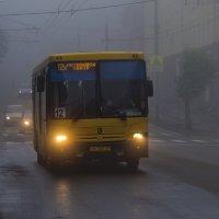 Утро туманное :: Владимир Максимов