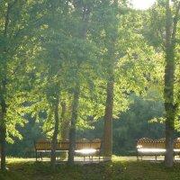 Скамеечки для солнца :: Калмакова Марина
